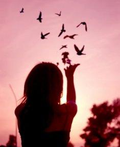 Arti, Tafsir, dan Ramalan Mimpi Burung